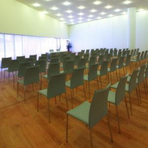 Hotel Hiberus - Sala de reuniones washingtonia