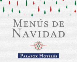 Menús Navidad Hotel Alfonso