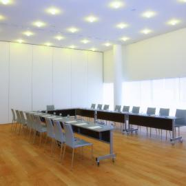 Salas de reuniones washingtonia